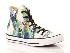 Sneaker alta Converse All Star Hi Canvas Graphics parrots